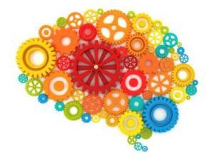 pic_neuroscience_degree