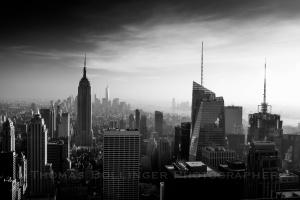 Raven_NYC-8591